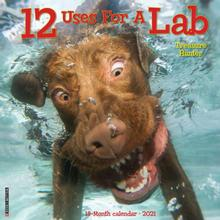 12 Uses for a Lab 2021 Wall Calendar