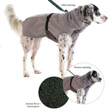 Winter Paw Dog Coat by Gold Paw - Silver with Forest