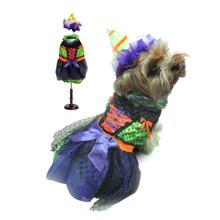 Witch Dog Halloween Costume - Neon
