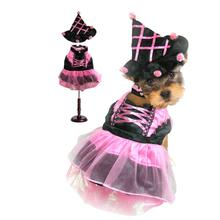 Witch Dog Halloween Costume - Pink Pompom