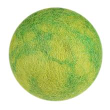 Wooly Wonkz Woodland Dog Toy - Green Stone Ball