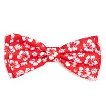 Worthy Dog Aloha Coral Dog and Cat Bow Tie Collar Attachment