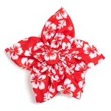 Worthy Dog Aloha Coral Dog and Cat Flower Collar Attachment
