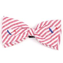 Worthy Dog Red Stripe Sailboat Dog and Cat Bow Tie Collar Attachment