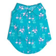Worthy Dog Flamingo Dog Shirt - Teal