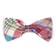 Worthy Dog Madras Bright Dog and Cat Bow Tie Collar Attachment