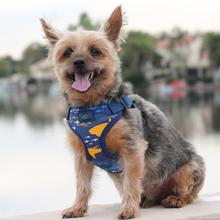 Wrap and Snap Choke Free Dog Harness by Doggie Design - Island Sharks