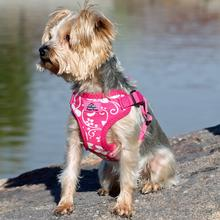 Wrap and Snap Choke Free Dog Harness by Doggie Design - Pink Hibiscus