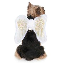Zack and Zoey Angel Wing Dog Harness Costume