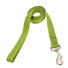 Zack and Zoey Nylon Dog Leash - Lime Green