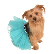 Zebra and Turquoise Pet Tutu