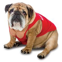 Zelda Life Guard Dog Costume