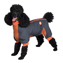 Zippy Dynamics Springy Dog Coat