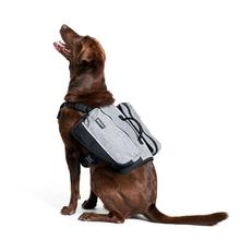 ZippyPaws Dog Backpack - Graphite