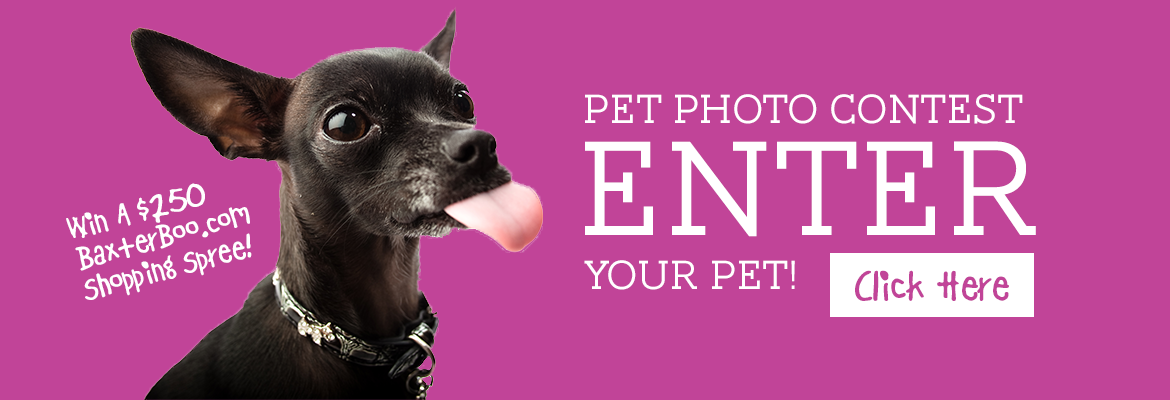 Enter our pet photo contest!